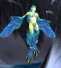 Image of Frostfeather Witch