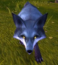 Image of Sly Fox
