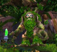 Image of Elder Stonebark