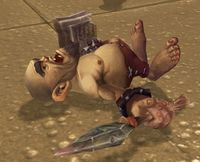 Image of Sand Pygmy Corpse