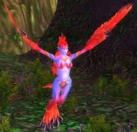 Image of Bloodfeather Harpy