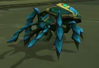 Image of Turquoise Scarab