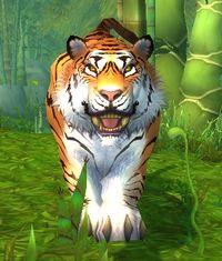 Image of Wild Huntress