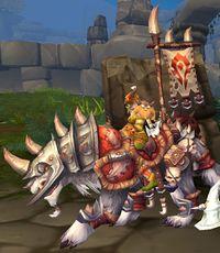 Image of Wolf Rider