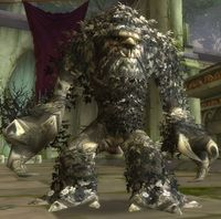 Image of Ironbark Protector