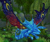 Image of Spirit Darter