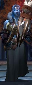 Image of Frostwarden Sorceress