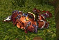 Image of Aspiring Wolfrider