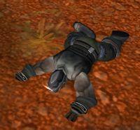 Image of Shadowforge Looter
