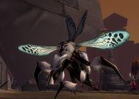 Image of Hive'Zara Wasp