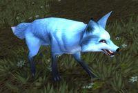 Image of Highlands Fox