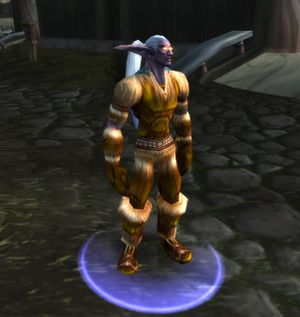 Tanned Leather Armor.jpg