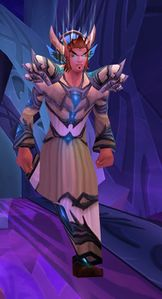 Image of Summoned Bloodwarder Mender