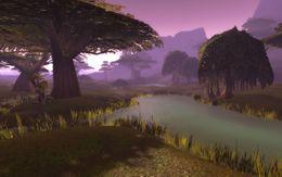 Wetlands landscape.jpg