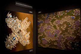 Blizzard Museum - Heart of the Swarm2.jpg