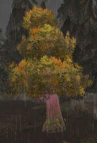 Image of Marked Tree