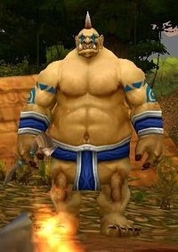 Image of Mosh'Ogg Witch Doctor