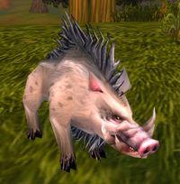 Image of Stonetusk Boar