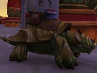 Image of Green Dragon Turtle