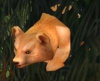 Image of Hyjal Bear Cub