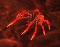 Image of Molten Hatchling
