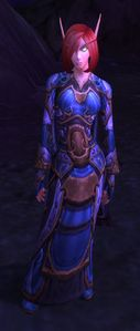 Image of Silvermoon Scholar