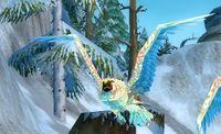 Image of Stormpike Owl