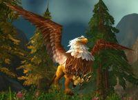 Image of Wild Gryphon