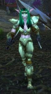 Image of Kaldorei Assassin