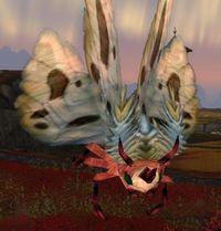 Image of Bloodspore Moth