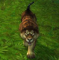 Image of Wild Stalker