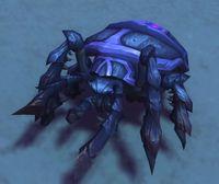 Image of Dune Bug