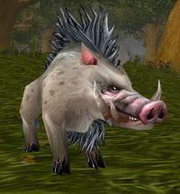 Image of Rockhide Boar