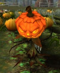 Image of Thrashing Pumpkin