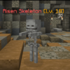 RisenSkeleton.png