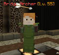 Mob Bridge Archer.png
