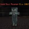 VoidSoulRoamer.png