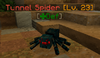 TunnelSpider.png