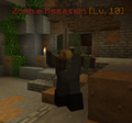 Mob Assassin Zombie.png