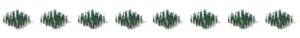 Plant flax 1.png