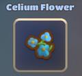 Celium 1.png