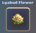 Lyabud 1.png
