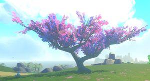 Mayleaf Tree