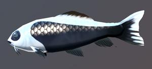 Yang Fish