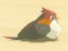 BotW Sand Sparrow Model.png