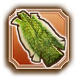 HW Aeralfos Leather Icon.png