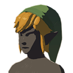 BotW Cap of the Sky Icon.png