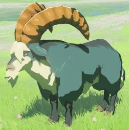 BotW Mountain Goat Model.png