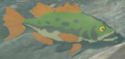 BotW Hyrule Bass Model.png