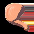 BotW Raw Bird Thigh Icon.png